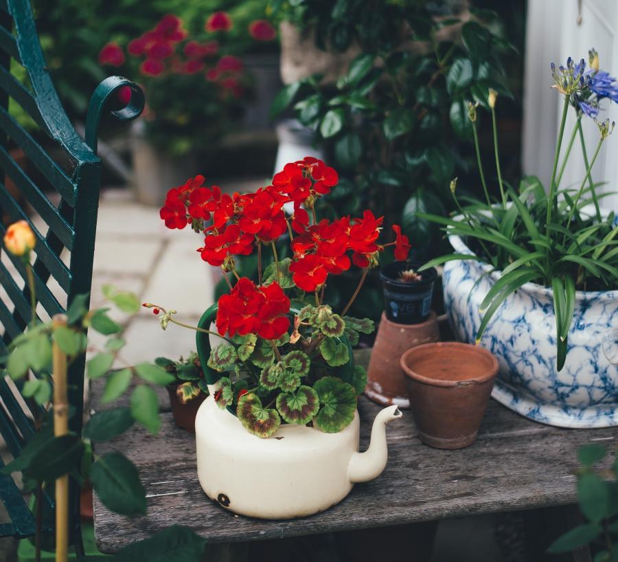Foto af en altan med blomster