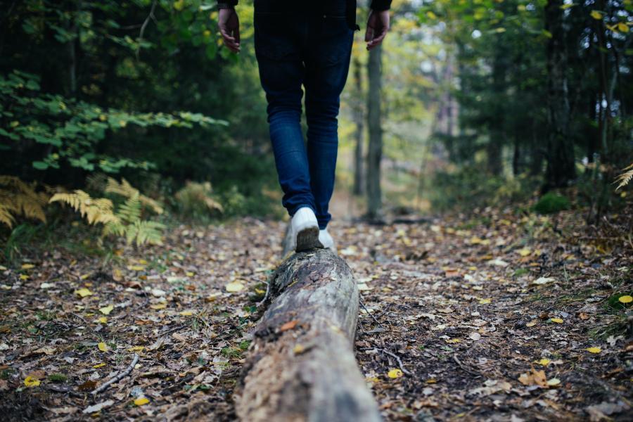 Foto af ben, der vandrer i en skov